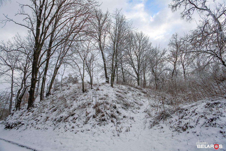 4-1-2009-12-29_1959pb_1330.jpg