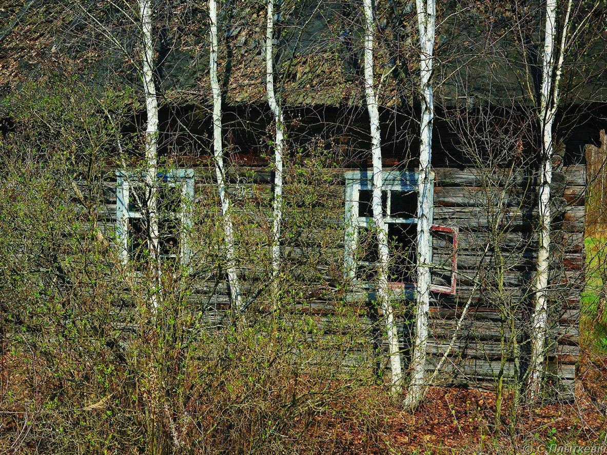 9-2006-04-26_5605_887.jpg